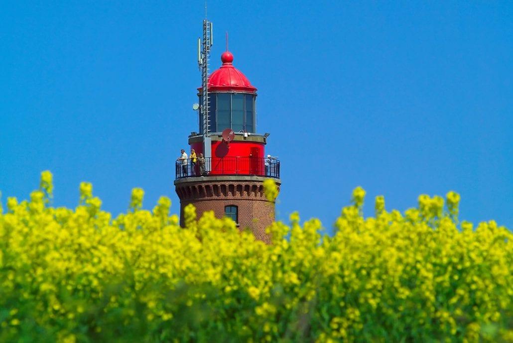 Der Bastorfer Leuchtturm, umgeben von Raps.